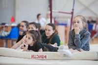 Первенство ЦФО по спортивной гимнастике, Фото: 28