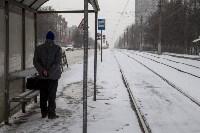 Мартовский снег в Туле, Фото: 62