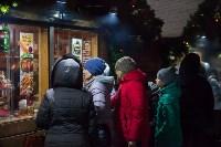 Туляки отметили Старый Новый год ледовым шоу, Фото: 12