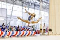 Художественная гимнастика. «Осенний вальс-2015»., Фото: 46