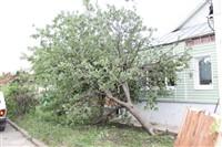 Последствия урагана в Ефремове., Фото: 39
