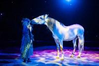 Туляков приглашают на новогоднее представление «Ёлка в цирке», Фото: 83
