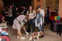 """Выставки собак в ДК """"Косогорец"""", Фото: 45"""