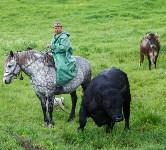 Русское поле фермера Кравцова, Фото: 14
