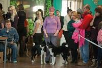 Выставка собак в Туле, 29.11.2015, Фото: 93