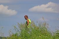 В Тульской области началась расчистка русел Оки и Упы, Фото: 7