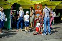 В Центральном парке Тулы проходит фестиваль помощи животным, Фото: 28