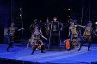 В Тульском цирке прошла премьера аква-шоу, Фото: 46
