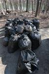 """""""Слобода"""" и Myslo очистили от мусора Платоновский парк!, Фото: 110"""