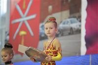 IX Всероссийский турнир по художественной гимнастике «Старая Тула», Фото: 13