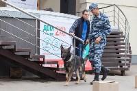 Школодром-2017, Фото: 215