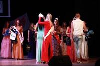 Мисс Тульская область - 2014, Фото: 430