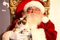 Невероятный Санта, Фото: 1