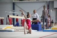 Соревнования по спортивной гимнастике на призы Заслуженных мастеров спорта , Фото: 54