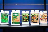 Магазин прогрессивного растениеводства GrowGuru: как получить богатый урожай, не выходя из дома, Фото: 10