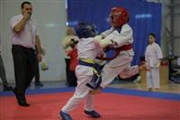 Соревнования на Кубок Тульской области по каратэ версии WKU. 29 декабря 2013, Фото: 4