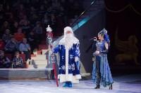 Туляков приглашают на новогоднее представление «Ёлка в цирке», Фото: 37