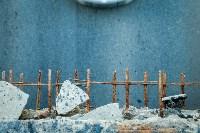 Рейд Myslo: в каком состоянии Тульские мосты, Фото: 6