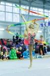 Кубок общества «Авангард» по художественной гимнастики, Фото: 9