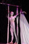 В Тульском цирке прошла премьера аква-шоу, Фото: 35