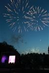 """Фейерверк в честь """"Арсенала"""" в Центральном парке. 16 мая 2014, Фото: 31"""