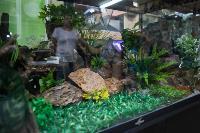 Аквакласс, Фото: 2