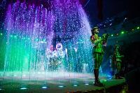 Шоу фонтанов «13 месяцев»: успей увидеть уникальную программу в Тульском цирке, Фото: 272