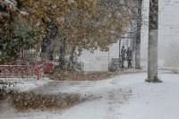 Первый снег в Туле, Фото: 1