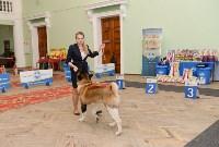 """Выставки собак в ДК """"Косогорец"""", Фото: 23"""