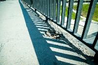 Рейд Myslo: в каком состоянии Тульские мосты, Фото: 21