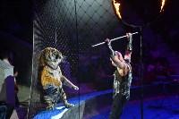 Цирковое шоу, Фото: 128
