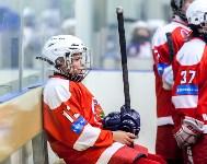 I-й Кубок главы администрации Новомосковска по хоккею., Фото: 31