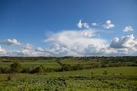 Тишина, солнце и бесконечный простор: 90 красивых фото с родины слонов – Одоевского района, Фото: 24