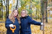 В Центральном парке Тулы появился сосновый бор «Слободы», Фото: 24