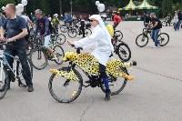 Велопарад в Туле, Фото: 70