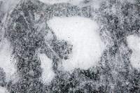 Проверка пруда в Центральном парке на Крещение. 14.01.2015, Фото: 9
