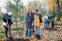 В Центральном парке Тулы появился сосновый бор «Слободы», Фото: 41