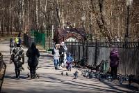 Солнечный день в Белоусовском парке, Фото: 17