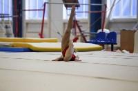 Спортивная гимнастика в Туле 3.12, Фото: 138