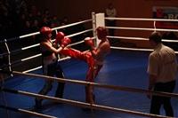 В Туле прошла матчевая встреча звезд кикбоксинга, Фото: 34