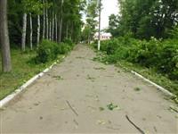 Ураган в Плавске, Фото: 4