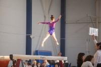 Первенство ЦФО по спортивной гимнастике, Фото: 95