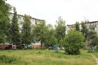 Гибель лип, Фото: 1