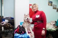 Всероссийская выставка собак 2017, Фото: 45