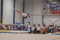 Первенство ЦФО по спортивной гимнастике, Фото: 190