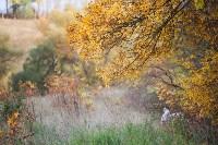 Золотая осень в Тульской области, Фото: 42