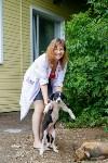 Собаки на тульской метеостанции, Фото: 4