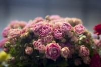 Как устроен розарий, Фото: 58