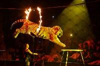 Цирковое шоу, Фото: 119