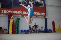 Соревнования по спортивной гимнастике на призы Заслуженных мастеров спорта , Фото: 37